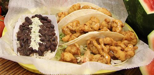 gator tacos